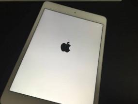 iPadmini4の写真