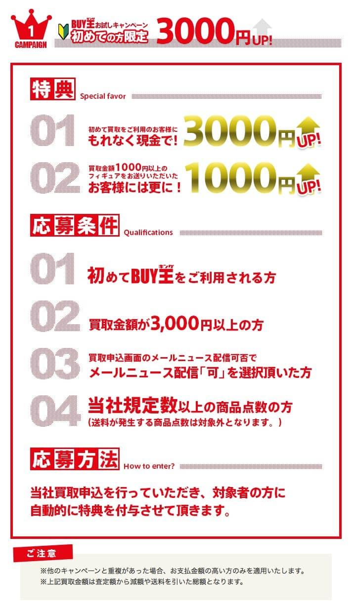 キャンペーン___ゲーム・DVD・本・書籍の中古買取サイトBUY王(バイキング) 10.34.45