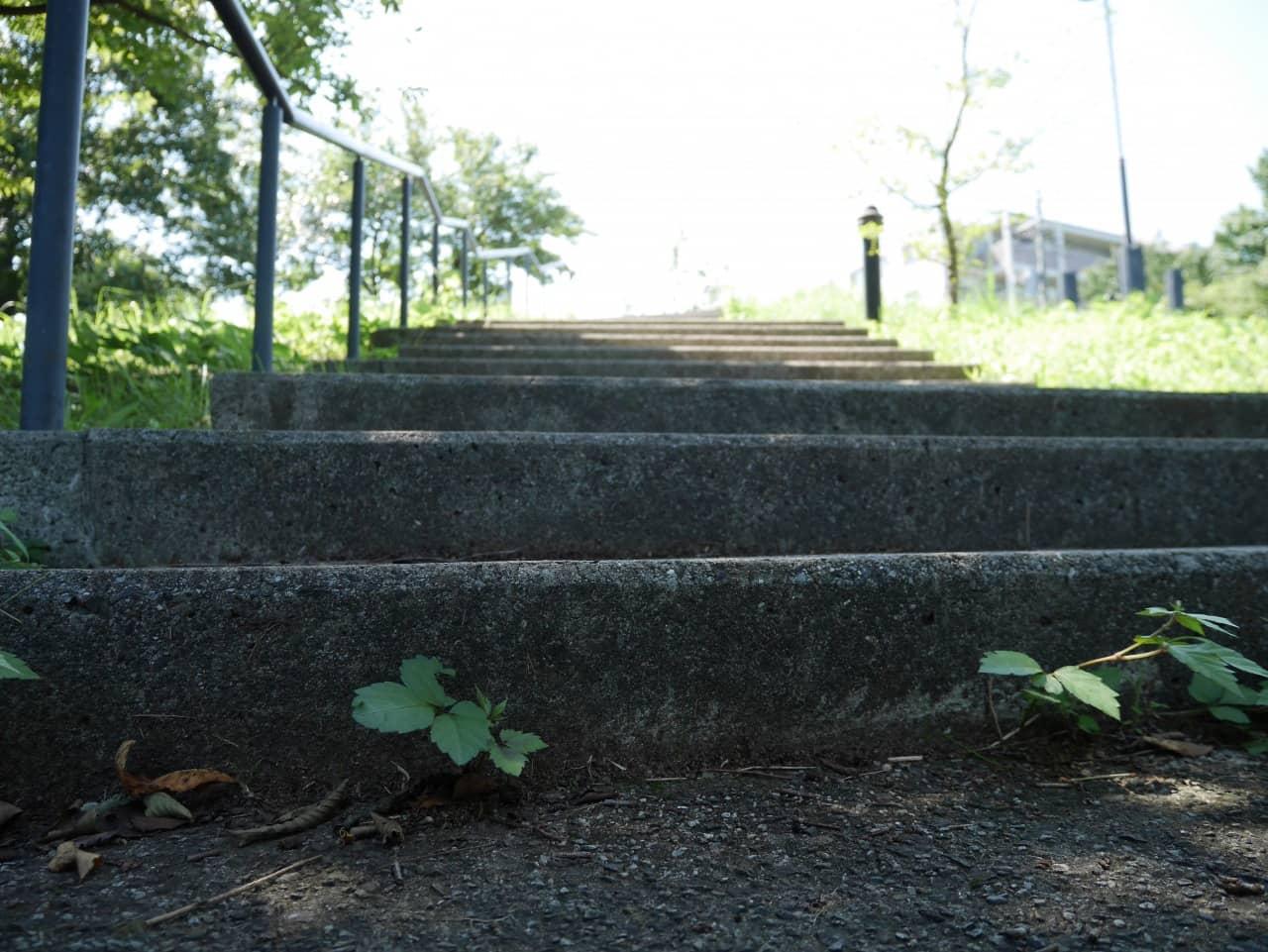 自然公園の階段。手前が暗くて向こうに行くと明るくなるのが何だか良い感じ。でもちょっと暗すぎるかな?