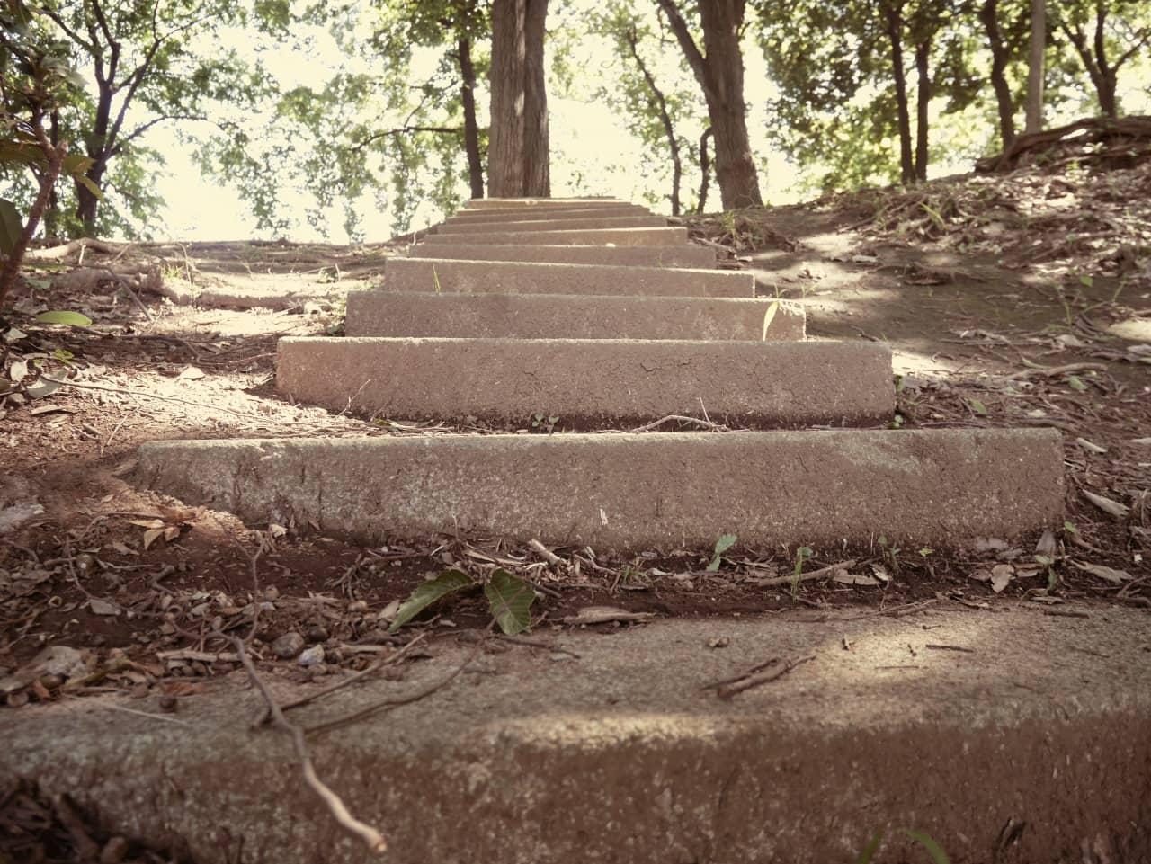 別の階段。こちらは「オールドデイズ」エフェクトをかけてみました。木漏れ日がちらほら見えるのがイイね。お気に入り。てかぼくは階段フェチなのだろうか。