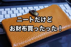 ニートだけどTIDEWAYの財布を買ったよ